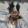 Vánoční procházku letos hostí Velká Dobrá