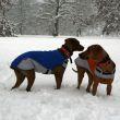 Máme sněhu až po kolena